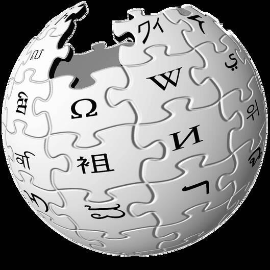 搜索人的信息维基百科只是
